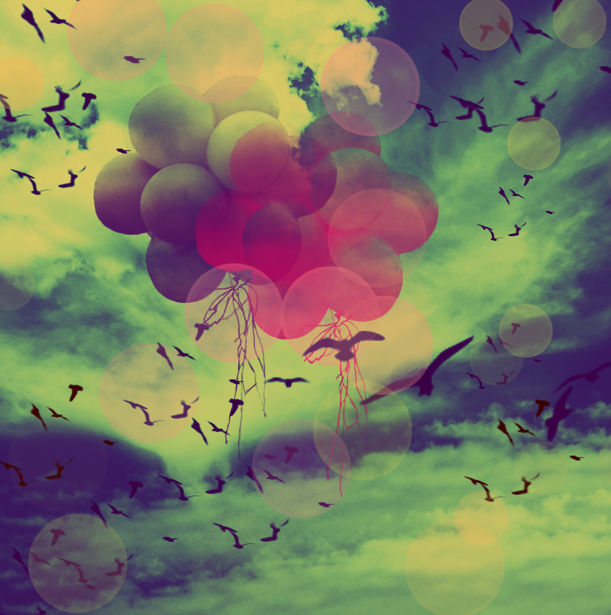 Balloons In The Skyjpg